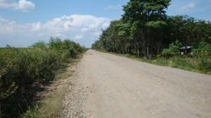 Batas Sebelah Selatan : Jalan Desa