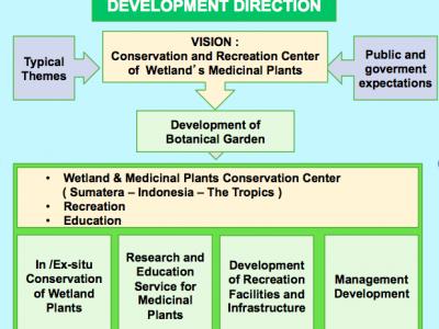 development-direction